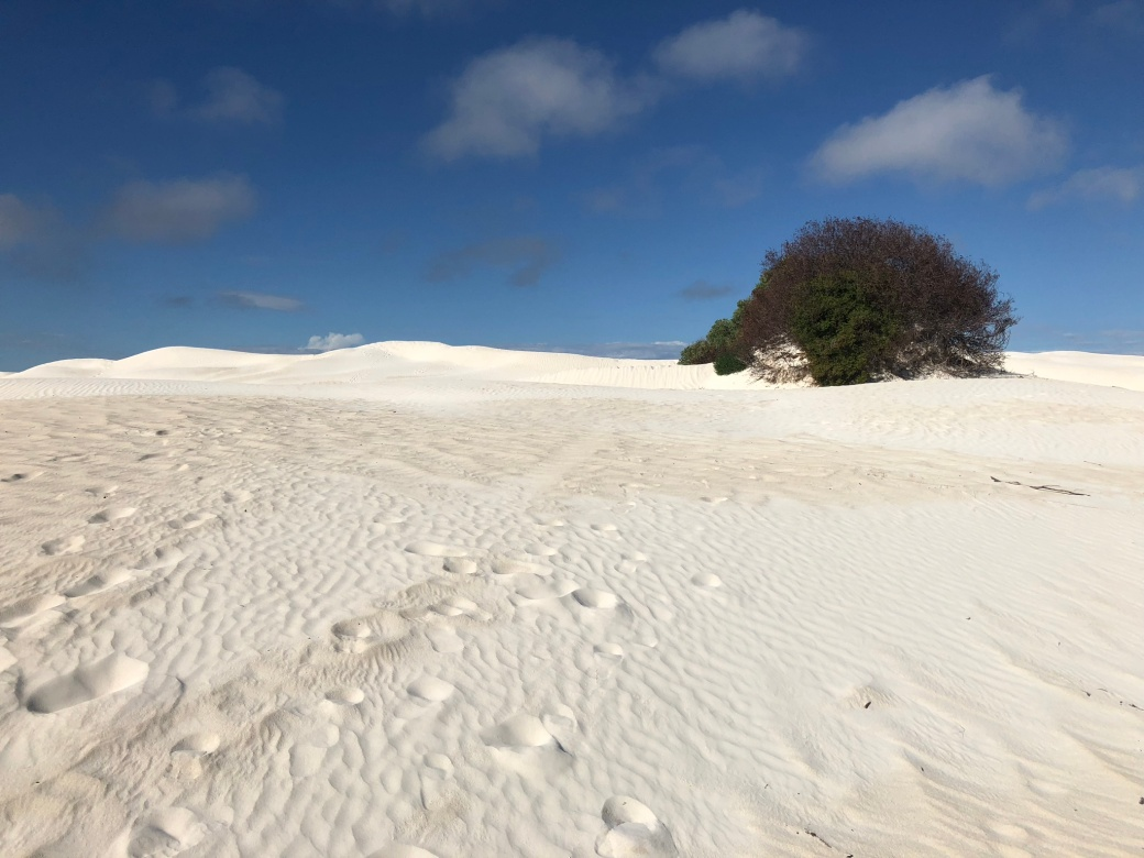 white sand1